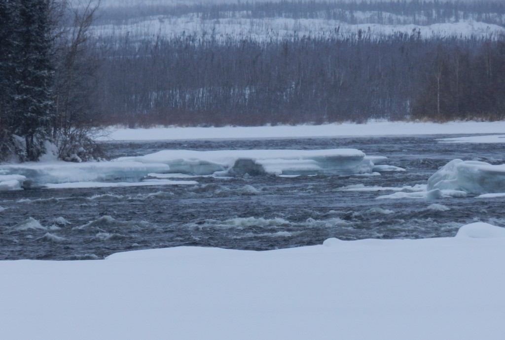 the rapids from the shore